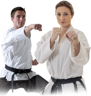 free online martial arts course